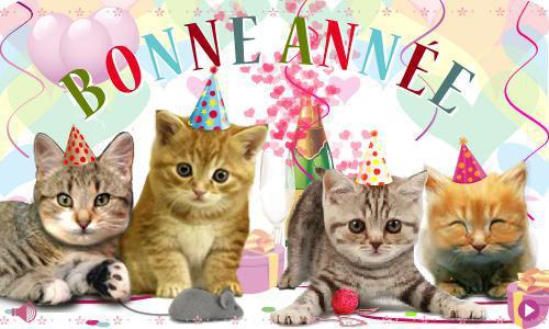 année des chats