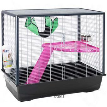cage zeno 2