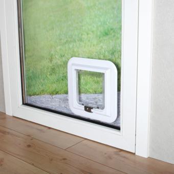 chatiere dans porte vitree