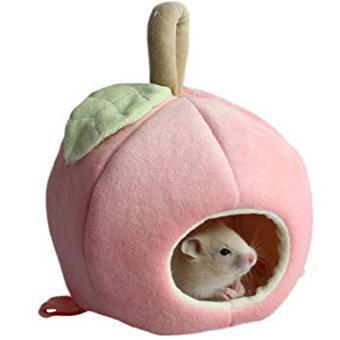 cochon d inde jouet