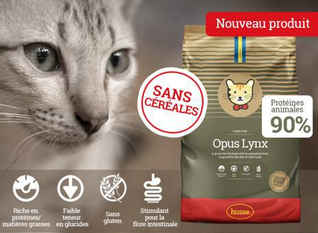croquettes chat sans glucides