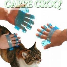 gant pour chat
