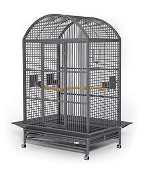 grande cage