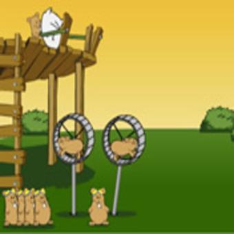 jeux de hamster