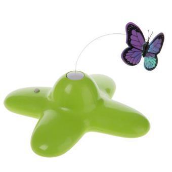 jouet papillon chat
