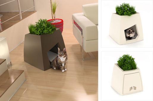 maison de toilette chat design