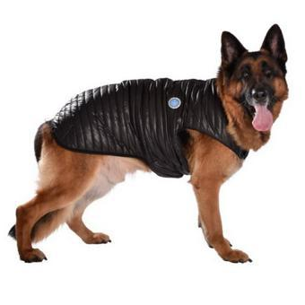 manteau grand chien