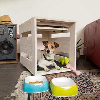 niche pour chien interieur