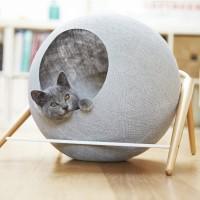 paniere chat