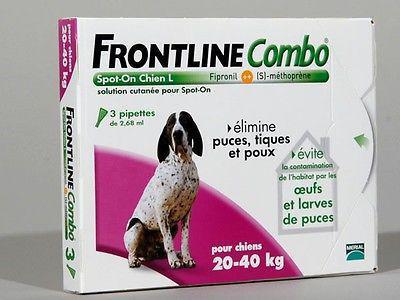 pipette frontline chien
