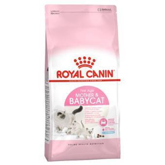royal canin baby cat