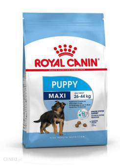 royal canin junior maxi