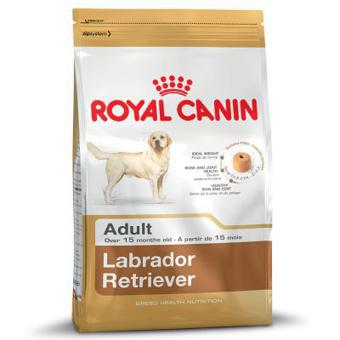 royal canin labrador