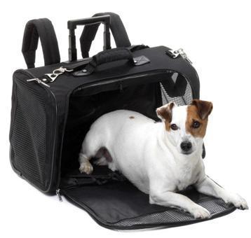 sac transport pour chien