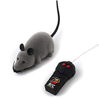 souris telecommande chat