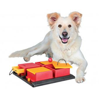 trixie chien