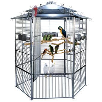 voliere perroquet