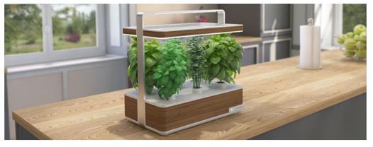 jardin hydroponique d intérieur