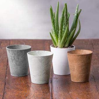 mini cache pot