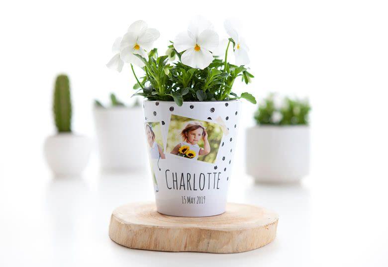 petit pot fleur